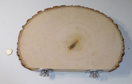 Large Thick Cut Basswood Perch
